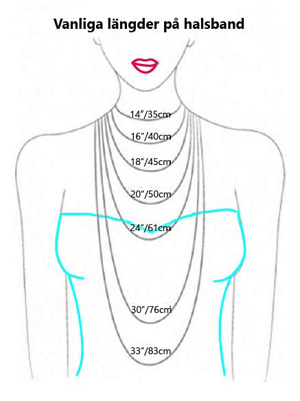 vanliga längder på halsband -guide